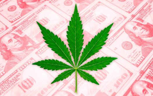 seller financing! recreational dispensary and grow Seller Financing! Recreational Dispensary and Grow cannabis businesses for sale financing 525x328 cannabis businesses for sale - biz4less Cannabis Businesses for Sale – Biz4Less cannabis businesses for sale financing 525x328